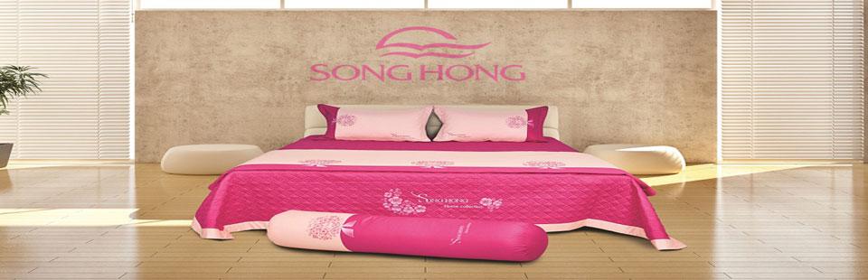 slide-chan-ga-goi-song-hong-1